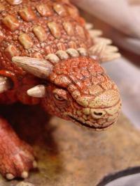 armored dinosaur