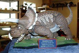 Three horned dinoe - triceratops