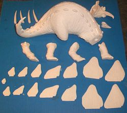 Aurora stegosaurus model