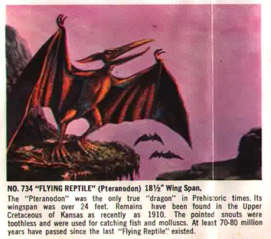 flying reptile aurora model kit